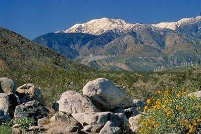 фото Palm Mountain Resort & Spa 488534888