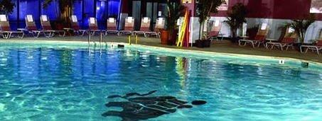 фото Carousel Resort Hotel and Condominiums 488727956