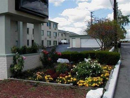 фото Rodeway Inn 488770860