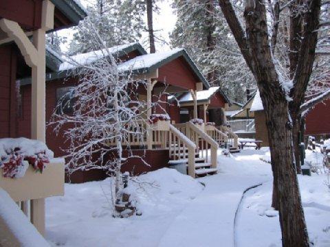 фото Cozy Hollow Lodge 488773884