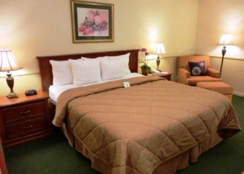 фото Comfort Inn 488791540