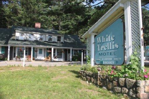 фото White Trellis Motel 488795630