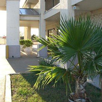 фото Mesquite Inn & Suites Hotel 488836917