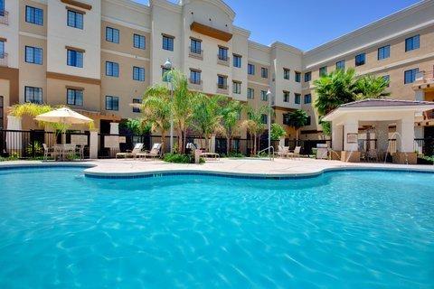 фото Staybridge Suites Phoenix-Glendale 488839868