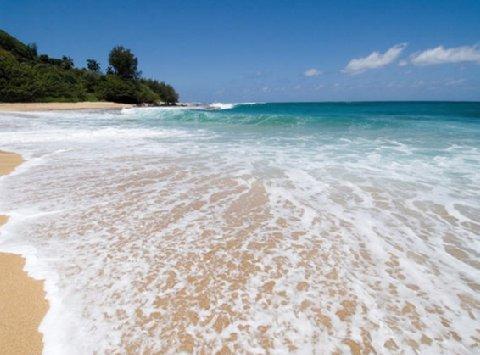 фото Wailua Bay View Resort 488855617
