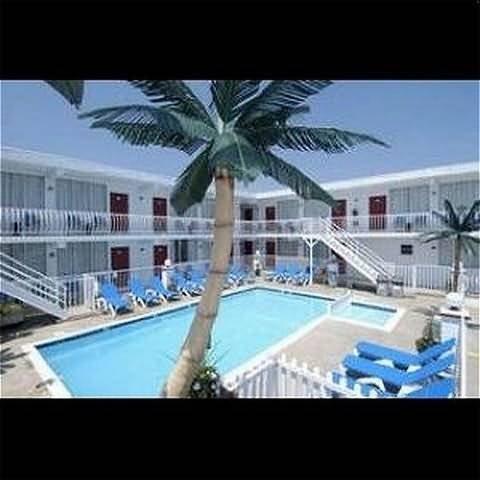 фото Daytona Inn And Suites 488898706
