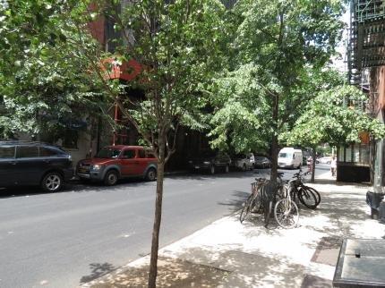 фото East Side Village Suite D 53915369