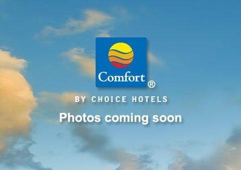 фото Comfort Inn 584805057