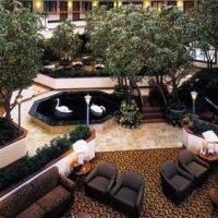 фото Embassy Suites Dallas - Near the Galleria 587353908