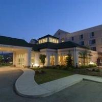 фото Hilton Garden Inn Indianapolis/Carmel 596525154