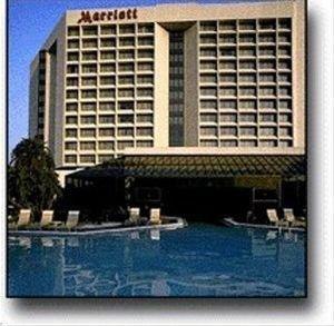 фото Tampa Marriott Westshore 596879951