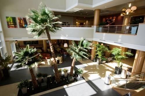 фото Embassy Suites Houston-Energy Corridor 597026047