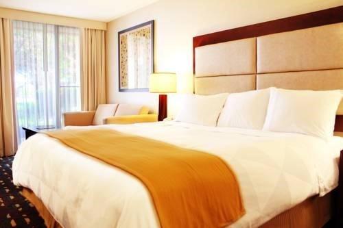 фото Radisson Hotel Chicago O`Hare 597226032