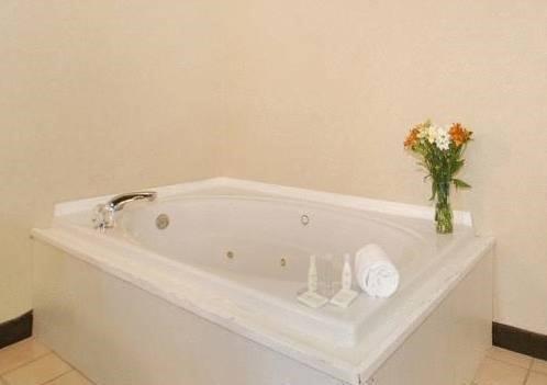 фото Comfort Suites Fishers/Indianapolis Northeast 597287380