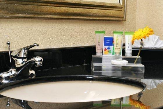 фото Atrium Hotel and Suites DFW Airport 601488224