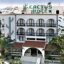 фото Cactus 601537889