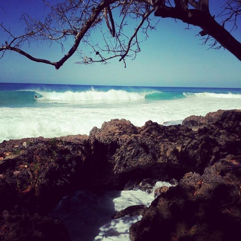 фото Hostal Tropical 603315211