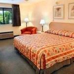 фото La Quinta Inn Tampa Near Busch Gardens 605456621