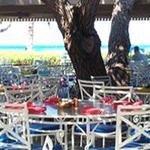 фото Mauna Lani Resort 605557741