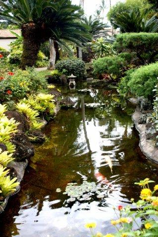 фото Pacific Fantasy 609975232