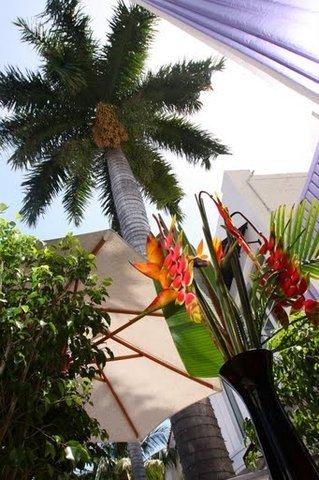фото Shelley Hotel 610873711