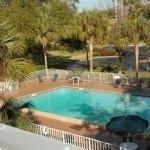 фото Americas Best Value Inn - I-75 Gainesville North 647974180