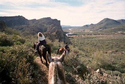 фото Saguaro Lake Ranch 668576079