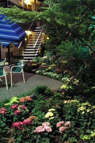фото Roman Spa Resort 668577474