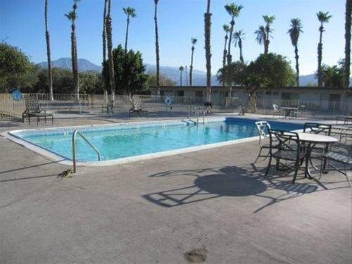 фото Palm Shadow Inn Motel 668578526