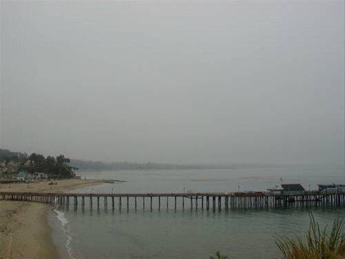 фото Opal Cliff Beach House 668583206