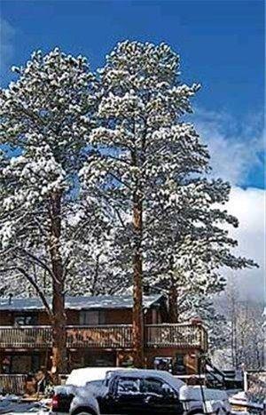 фото Four Seasons Inn 668585369