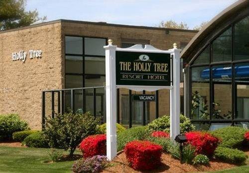 фото Holly Tree Resort 668598417