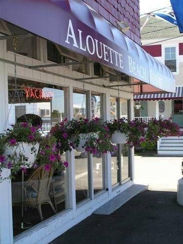 фото Alouette Suites 668599154