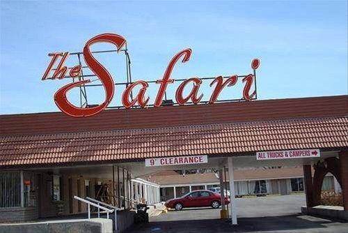 фото Safari Motel 668620413