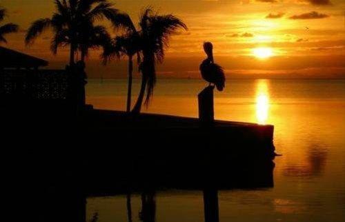 фото Seascape 668625876