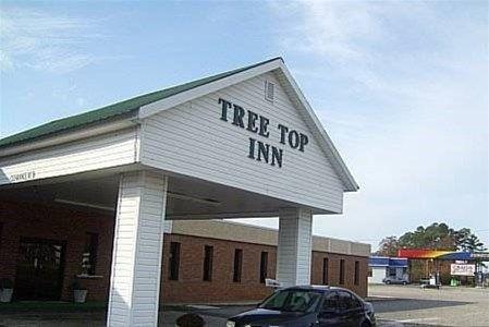 фото Treetop Inn 668745637