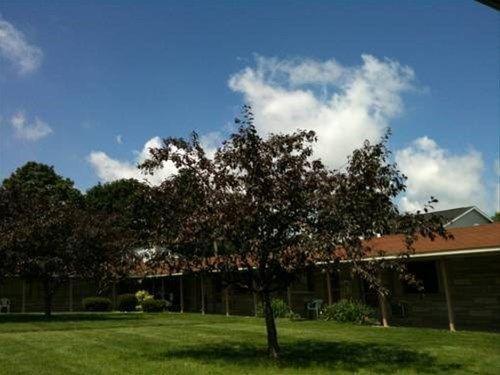 фото Wolds Motel - Mt. Pleasant 668747861