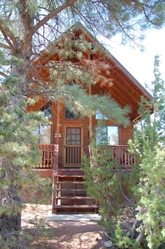 фото The Spaghetti Western Cabin 677412373