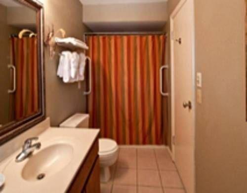 фото Baby Quail Inn 677414994