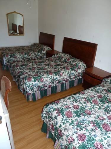 фото Dolphin Hotel 677443790