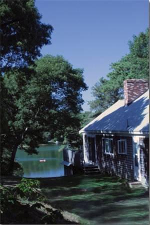 фото Pine Shore Cottages 677565344