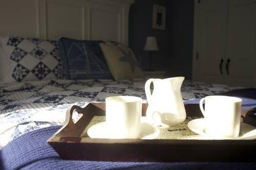 фото Bristol House Bed & Breakfast 677653332