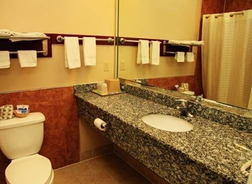фото Palace Inn Houston 677676659