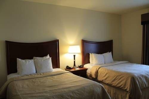 фото Comfort Suites Stone Oak 677682822