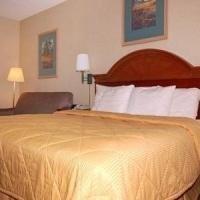 фото Comfort Inn South 685904947