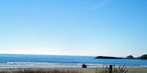 фото Anchor Beach Inn 686570502