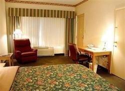 фото Holiday Inn Sunland Park 687181617