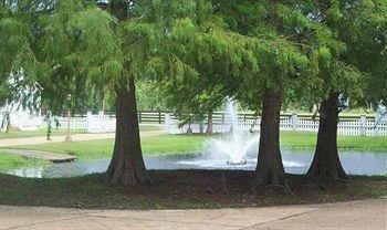 фото Magnolia Plantation 693326989