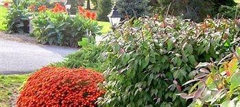 фото West Ridge Guest House 693526943