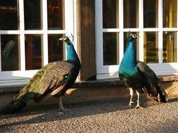 фото Los Poblanos Historic Inn & Organic Farm 693531385